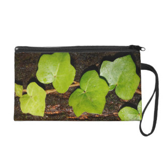 Azores endemic hedera wristlet purse