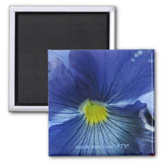 Azul Magnet