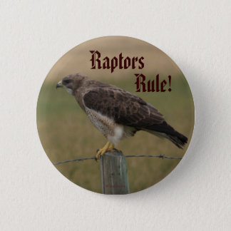 B0010 Swainson's Hawk 2 Inch Round Button