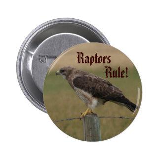 B0010 Swainson's Hawk 2 Inch Round Button