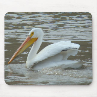 B0014 American White Pelican Mouse Pad