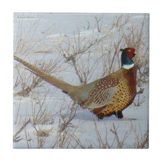 B0022 Ring-necked Pheasant Tile