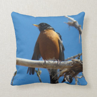 B0028 Robin Throw Pillow