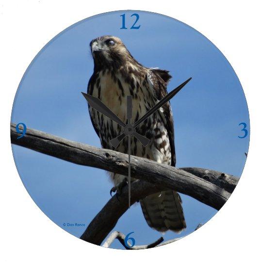 B0054 Swainsons Hawk Large Clock