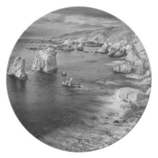 B&W beach coastline, California Plate