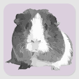 B&W 'Betty' Guinea Pig Stickers