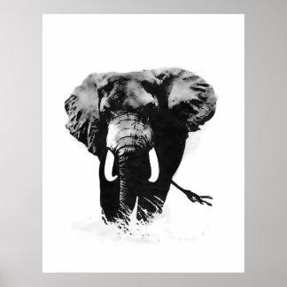 B&W Elephant Posters Prints