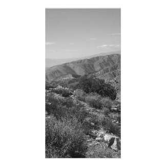 B&W Joshua Tree National Park 2 Photo Card