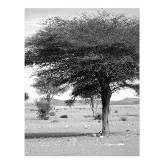 B&W Marocco desert Letterhead