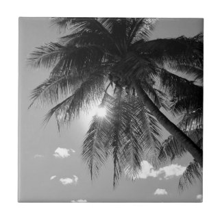 B&W Palm Tile