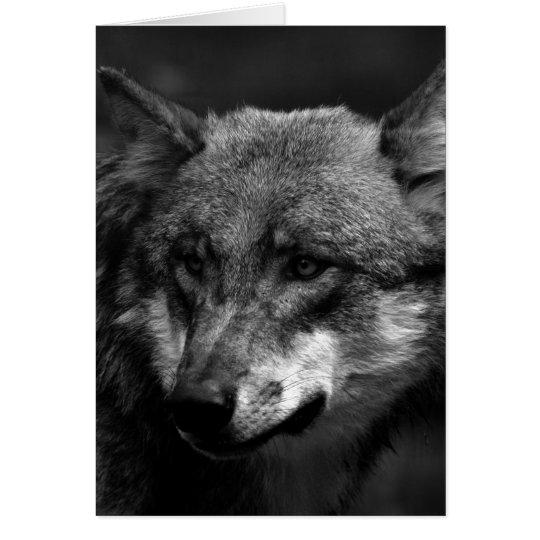 B&W Wolf Card