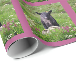 Baa Baa Black Sheep Wrapping Paper