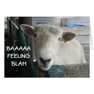 BAAAAA-FEELING BLAH- GET WELL CARD