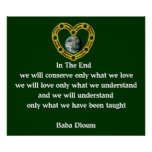Baba Dioum Quote Posters