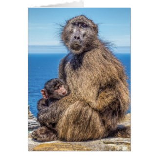 Baboon & Baby Greeting Card