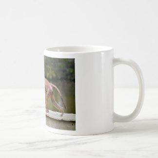 Baboon walking on wooden plancks coffee mug