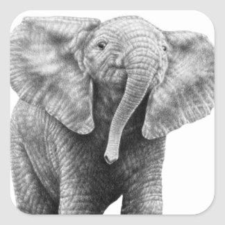 Baby African Elephant Sticker