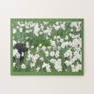 Baby and Flowers - Skye and Her Puppies Puzzle
