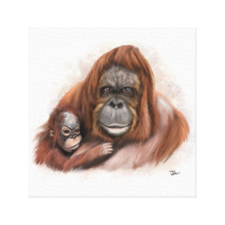 Baby and Mother Orang-utan Canvas