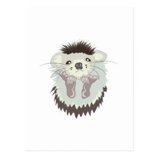 Baby Animal Postcard