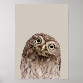Baby Animals Nursery Poster - Owl