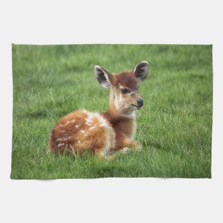 Baby Antelope Kitchen Towel