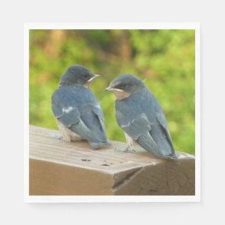 Baby Barn Swallows Nature Bird Photography Paper Napkins