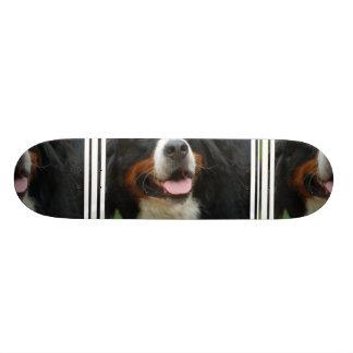 Baby Bernese Mountain Dog Skate Board