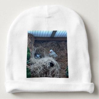 Baby bird baby hat baby beanie