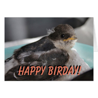 Baby bird customized greetings card