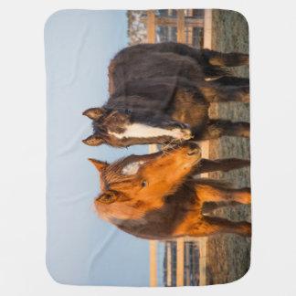 Baby Blanket with Navajo Foals