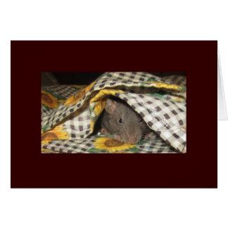 BABY BLANKIE RAT CARD