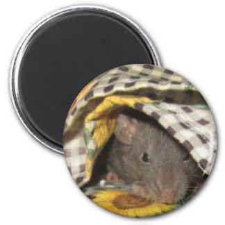 BABY BLANKIE RAT MAGNET