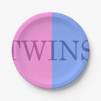 BABY BOY AND GIRL FRATERNAL TWINS PAPER PLATES