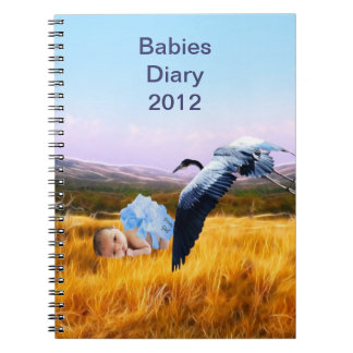 Baby boy diary 2012 spiral notebook