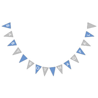 Baby Boy Nagpal Blue and Silver Banner
