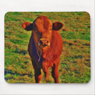 BABY BROWN COW EATING MOUSE PAD