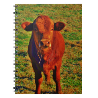 BABY BROWN COW EATING SPIRAL NOTEBOOKS
