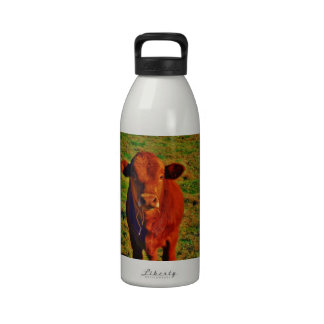 BABY BROWN COW EATING REUSABLE WATER BOTTLES