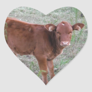 Baby Brown Cow . Heart Sticker