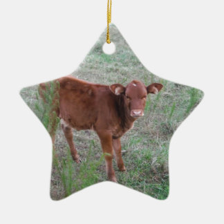 Baby Brown Cow . Double-Sided Star Ceramic Christmas Ornament