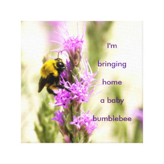 Baby Bumblebee Canvas Print