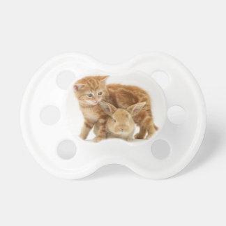 Baby Bunny and Orange Kitten Meet Baby Pacifiers