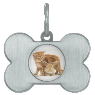 Baby Bunny and Orange Kitten Meet Pet ID Tag