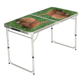 Baby Bunny Beer Pong Table