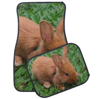 Baby Bunny Car Mat