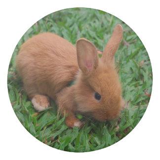 Baby Bunny Eraser