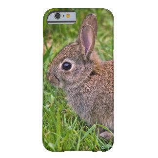 Baby Bunny iPhone 6 Case