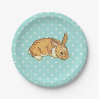 baby bunny on teal polka dot background 7 inch paper plate