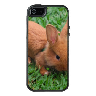 Baby Bunny OtterBox iPhone 5/5s/SE Case